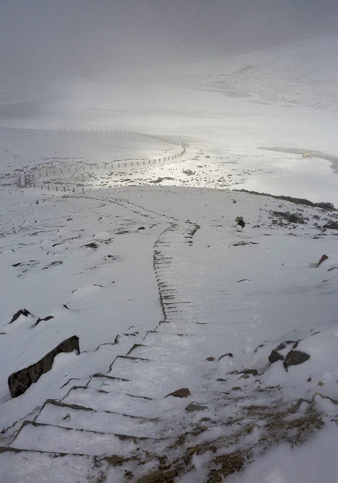sela_frozen_lake